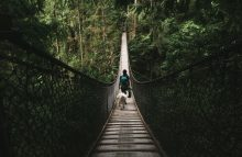 Explore The Family Friendly Neighbourhood: Lynn Valley, North Vancouver