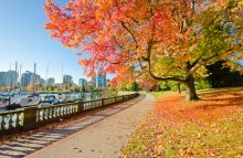 3 Upcoming Fall Events Happening In Vancouver, B.C.